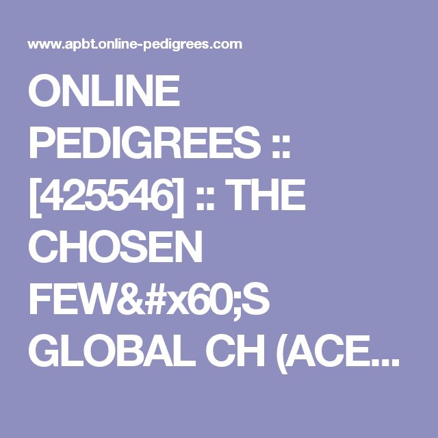 ONLINE PEDIGREES  :: [425546] :: THE CHOSEN FEW`S GLOBAL CH (ACE) CARMELA SOPRANO 4XW , 1XG **D.O.Y 2011**