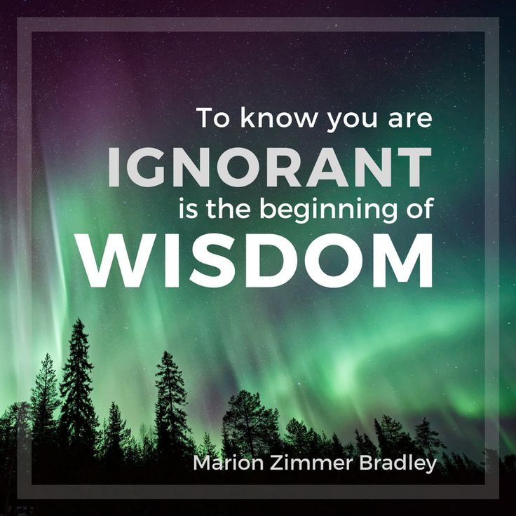 """To know you are ignorant is the beginning of wisdom."" - Marion Z. Bradley"