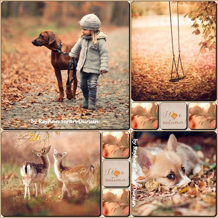 '' I love Autumn '' by Reyhan Seran Dursun