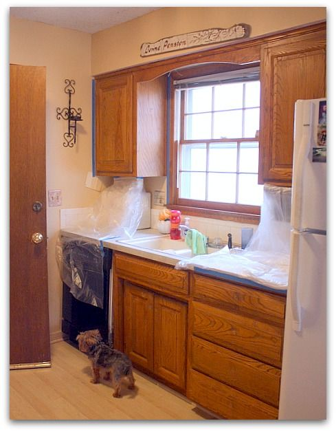 Short Cut Way To Repaint Kitchen Cabinets With No Sanding Ect