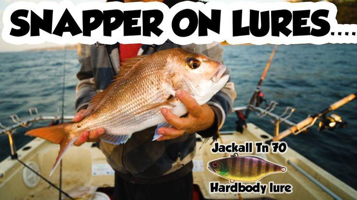 Snapper Fishing On Lure's Hardbody Bait Collection Australian Salmon +  ...