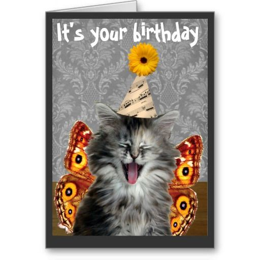 Birthday Orange Cat: 112 Best Images About Birthday Cards / All Occasions