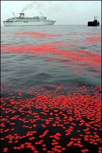 A million poppies were dropped off the coastline of Normandy in remembrance of those who lost their lives