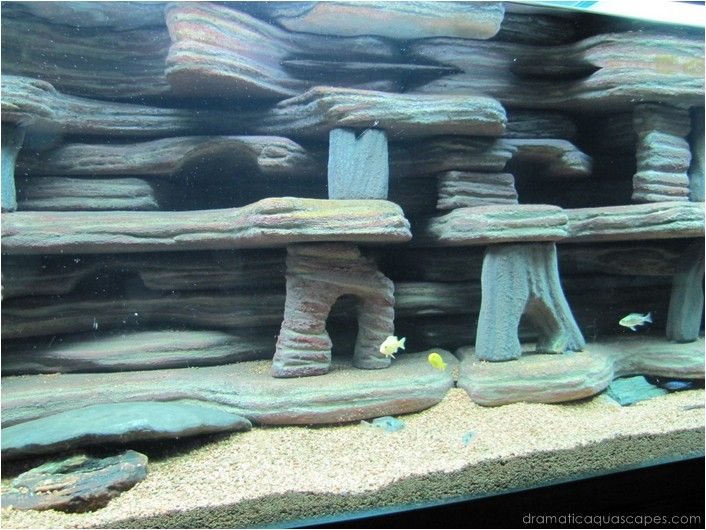 Dramatic AquaScapes - DIY Aquarium Background - Dan and Becky Topp in the Community Spotlight