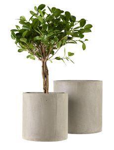 Blomkruka av betong 2-pack
