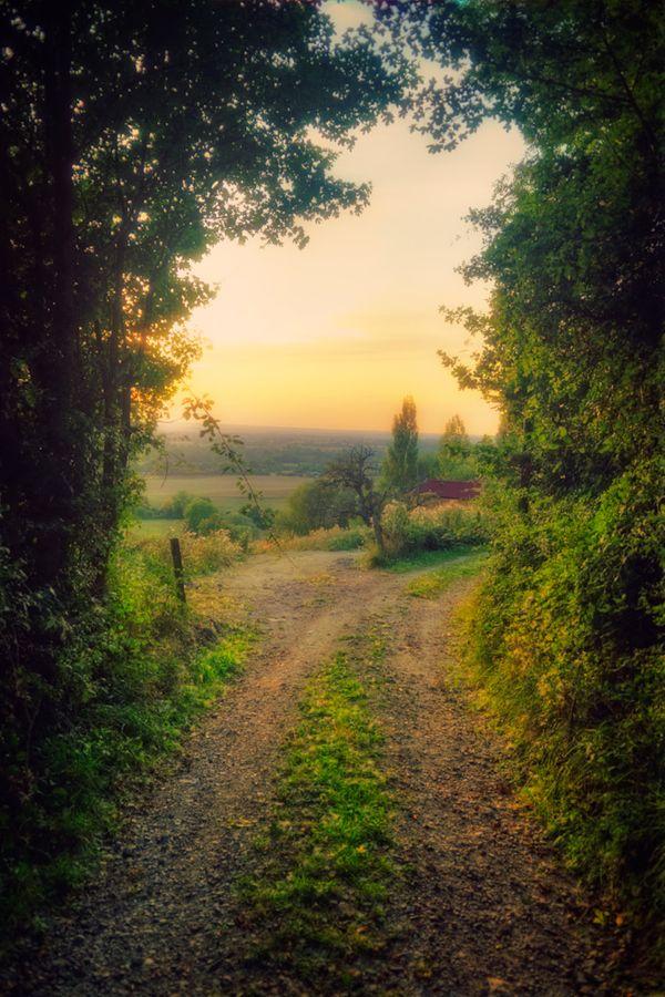 Door to Eden by Allard Schager