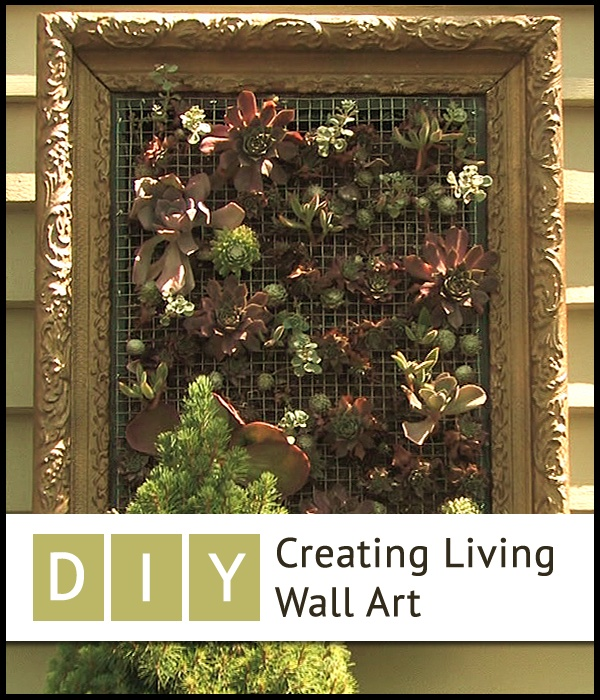 DIY Creating Living Wall Art