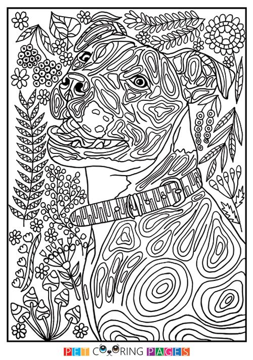 1380 best coloring pages images on Pinterest Coloring books