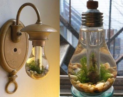 You don't have to just recycle your light bulb at home, you can reuse it to create a light bulb craft ideas. @