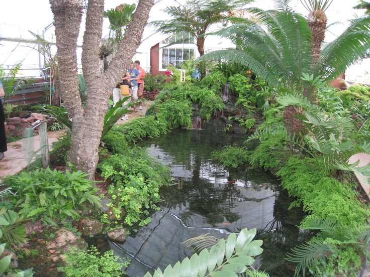 69 Best Images About New Orleans Courtyards On Pinterest Gardens New Orleans Louisiana And