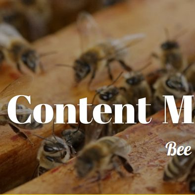 http://www.ad360.eu/content-management/    Content is not only the material you produce today. It is access to that material, the relevance of it to your audience, now and in the future, and how it is interlinked and built upon.    #AD360 #Digital #Content #Bee #BeBee