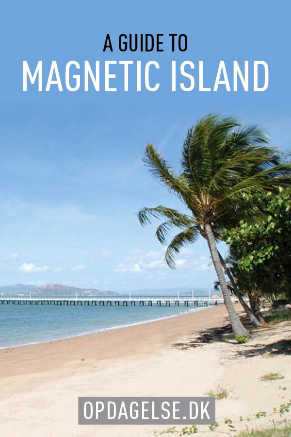 A guide to Magnetic Island, A beautiful Island in Australias East Coast.