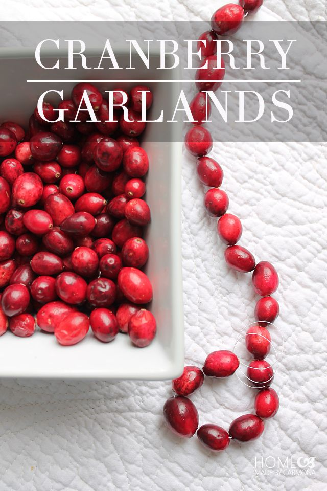 Cranberry and popcorn garlands are a fun simple project to do with the whole family a day or two before Christmas!