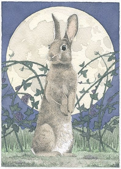 Blackberry Bunny by Carrie Wild