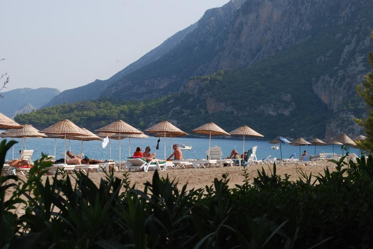 Press like if you have been to Cirali Beach if you haven't you are missing out.