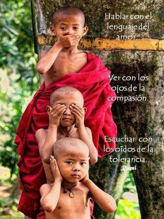 Hablar, ver, escuchar.. http://www.gorditosenlucha.com/