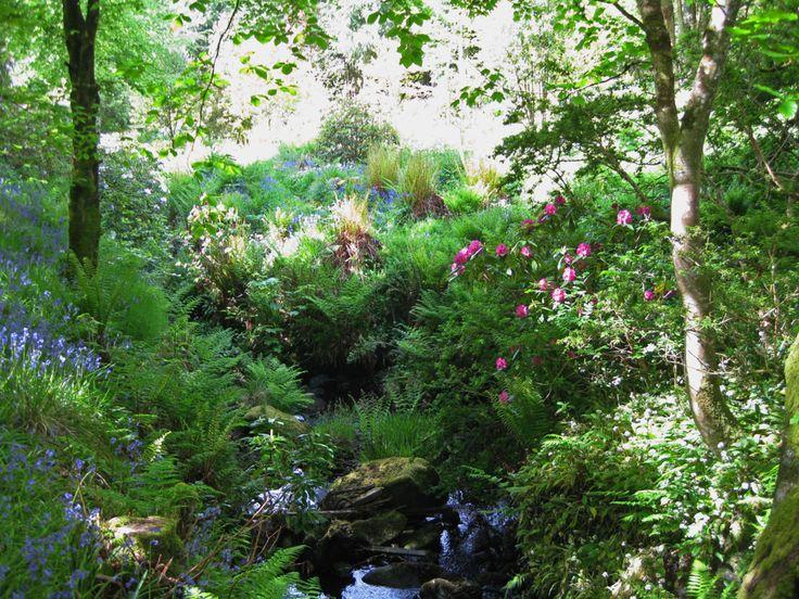 Garden Ideas Scotland 59 best sandra images on pinterest | backyard ideas, garden ideas