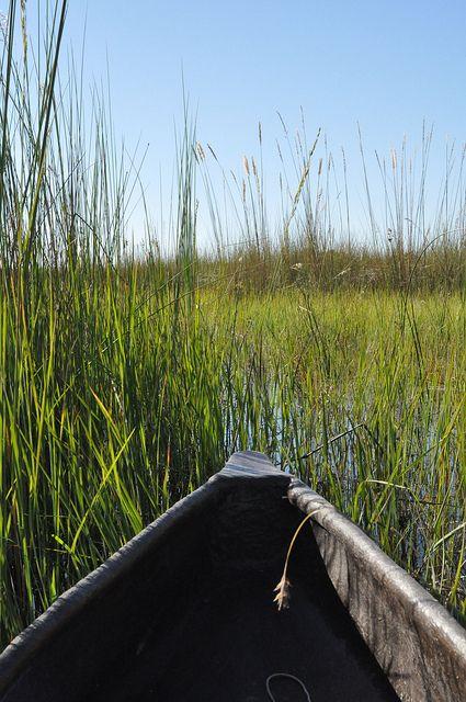 Okavango Delta, Botswana.  Photo: sunumet
