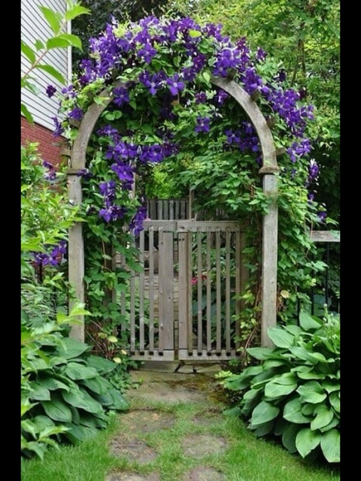 Garden gate and landscaping