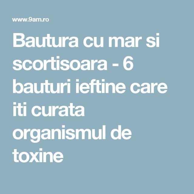 Bautura cu mar si scortisoara - 6 bauturi ieftine care iti curata organismul de toxine