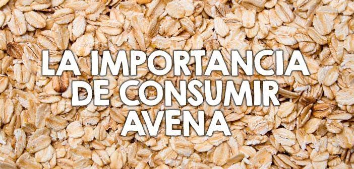 ¿Sabes los beneficios de consumir avena?  http://nutricionysaludyg.com/nutricion/avena-beneficios-consumir-propiedades/