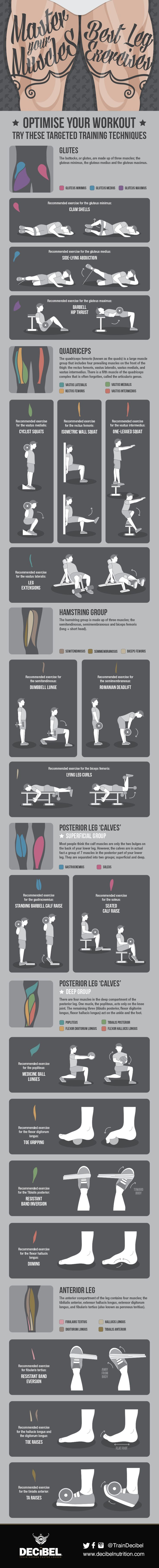 Master Your Muscles: Best Leg Exercises	http://www.decibelnutrition.com/unilad/master-your-muscles-best-leg-exercises