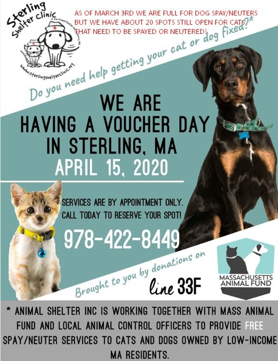 10th Ma Animal Fund Voucher Day Free Spay Neuter April 15th In