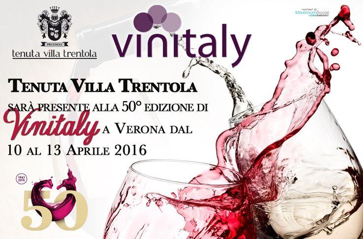 Tenuta Villa Trentola sarà presente alla 50° #edizione di VINITALY che si terrà a #Verona dal 10 al 13 #Aprile 2016. Venite a trovarci e ad assaggiare i nostri #ViniPregiati.     #Vino #VinoRosso #Wine #VinitalyVerona #Vinitaly2016 #Vinitaly #FieraVino #DegustazioneVini #TenutaVillaTrentola