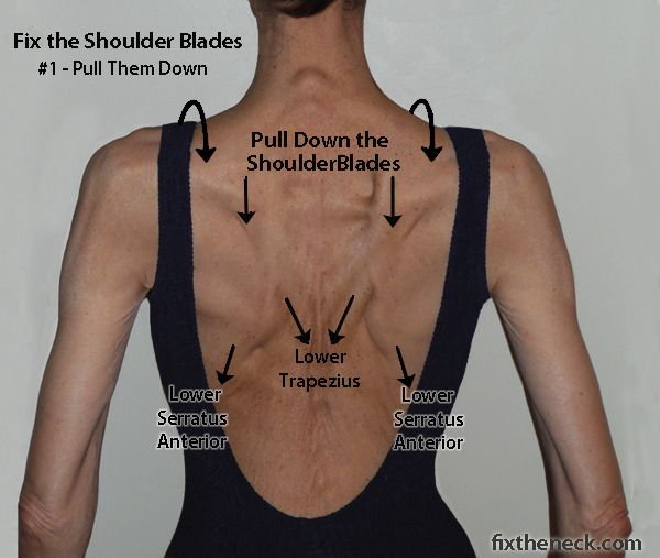 Fix the neck shoulder blade exercises