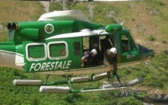 La Mafia Esulta Grazie a Renzi: Addio Alla Guardia Forestale, Aveva Scoperto La Terra Dei Fuochi #renzi #guardiaforestale #terradeifuochi