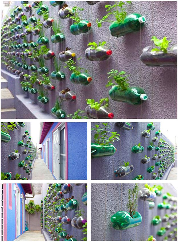 Recycled Bottle Herb Garden. so cool!