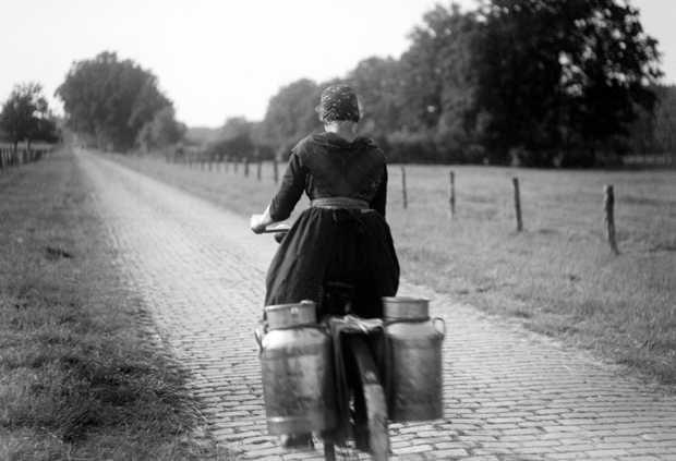 STAPHORST- Een boerin fiets naar het weiland om haar koeien te melken. ANP PHOTO VAN BUITEN #Overijssel #Staphorst