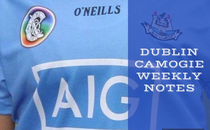 We Are Dublin  » DUBLIN CAMOGIE WEEKLY NOTES