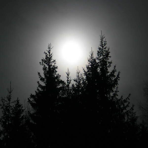 Eclipse – gikk du glipp av solformørkelsen?