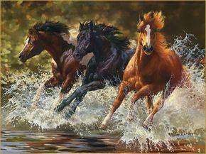 wild horse run