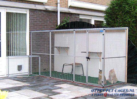 Pantip Com J7550664 ไอเด ย ร ว สำหร บ ก นแมวออกนอกบ าน และกรงแมวในสวน เอามาฝากค ะ ในป 2021 ร ว แมว ไอเด ย