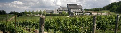 Tawse Winery, Vineland, Ontario