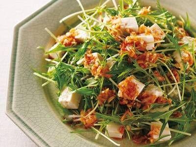 小田 真規子 さんの木綿豆腐を使った「豆腐と水菜の中国風サラダ」。淡泊な豆腐と水菜に、ドレッシングのピリ辛とねぎの風味、ごま油のコクがぴったりの一品です! NHK「きょうの料理」で放送された料理レシピや献立が満載。