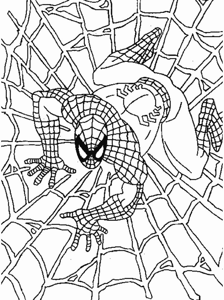 Spiderman Crawling Coloring Pages