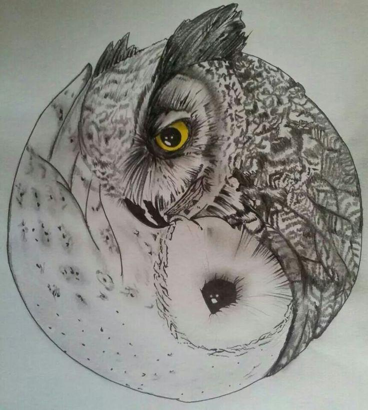 Owl Optical Illusion  Owls My Favorite Animal Pinterest