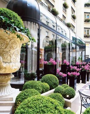 L'Orangerie à l'hôtel Four Seasons George V (VIIIe).