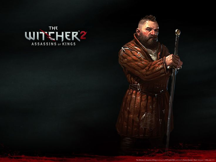 Zoltan the witcher 2 enhanced edition (1600x1200, witcher, enhanced, edition)  via www.allwallpaper.in