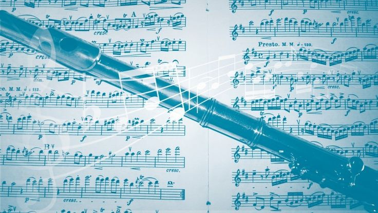 Go from knowing nothing about the flute to playing songs in no time.