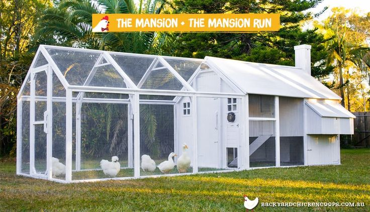 The Mansion Chicken Coop with Mansion Run attached painted white