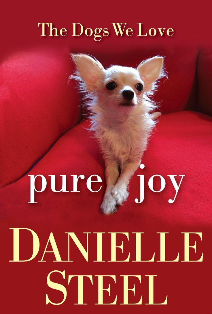 Minnie's Book Cover! Pure Joy: The Dogs We Love