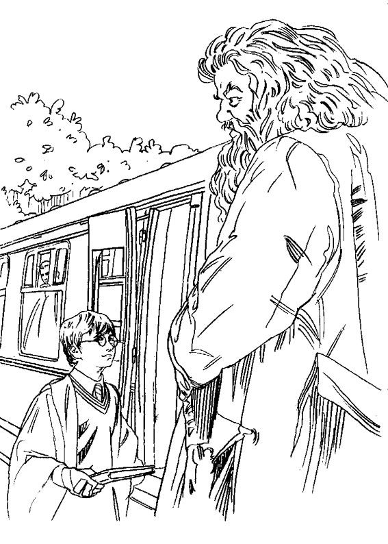 120 Disegni Di Harry Potter Da Colorare Disegni Di Harry Potter Harry Potter Alfabeto Idee Per Disegnare