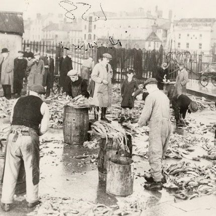 Fish gutting on Sutton harbour c1941
