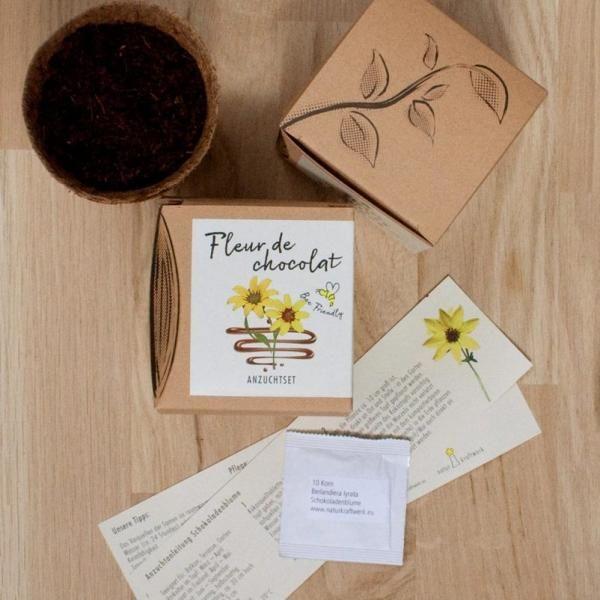 Anzuchtset Fleur De Chocolat Saatgut Und Anzuchterde Inklusive In 2020 Saatgut Schokoladenblume