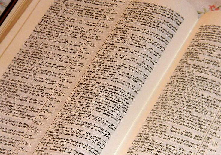 Are you ready to begin your 2016 Bible Reading Schedule for February?   In case you missed, here are  the 2016 Bible Reading {overview}, and the pdfs for the entire year are on the 2016 Bible Reading Schedule page.