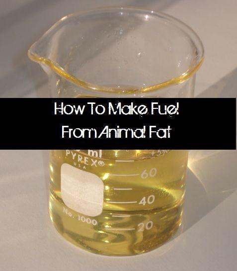 32 Best Biofuel Images On Pinterest